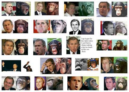 Bush Still More Popular Than Cholera: Update 1