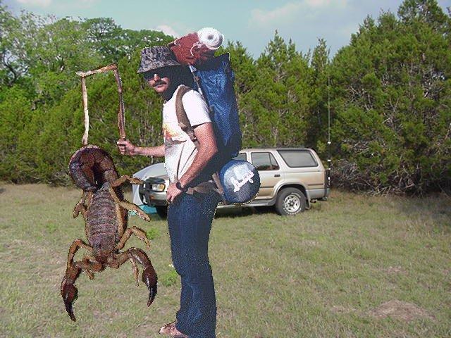Republican Scorpions & Democratic Frogs
