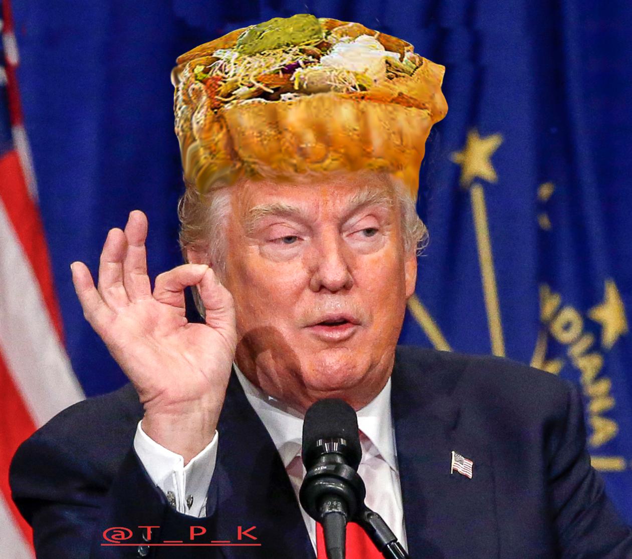 @realTacoHeadTrump